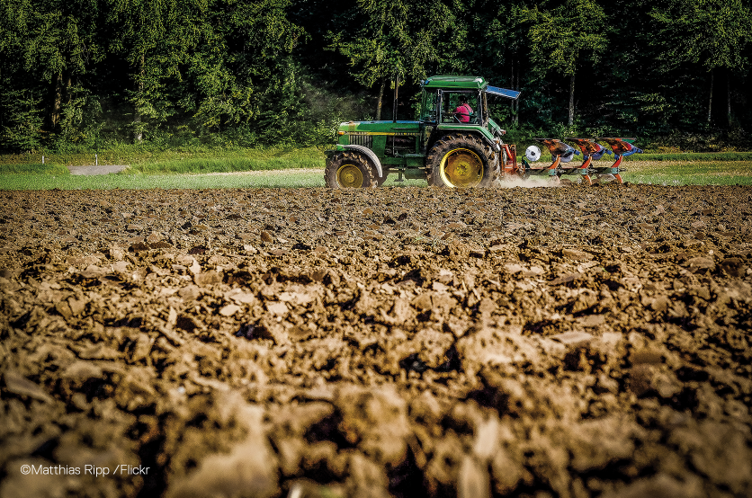 180822_image_sem_ete18_agriculture
